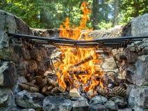 utomhus- grillfest Arkivbild