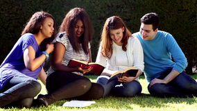 Utomhus- gruppbibelstudie stock video