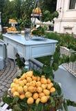 Utomhus- händelse för beröm med aprikors Royaltyfri Bild
