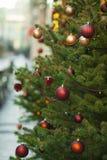 Utomhus- jul dekorerade trädet Fotografering för Bildbyråer