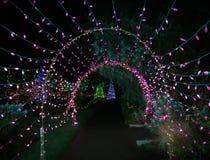 utomhus- jullampor Arkivbild