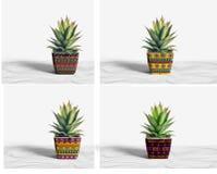 Utomhus- keramiska krukor fotografering för bildbyråer