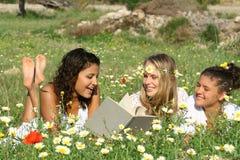 utomhus läsa sommar Royaltyfri Foto