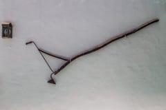Utomhus- lampa för kanariefågel royaltyfri foto