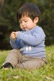 utomhus- leka för pojke Arkivfoto