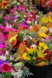 Utomhus- marknad som säljer olika färgrika blommor i Stockholm, arkivfoto