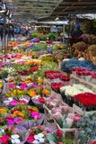 Utomhus- marknad som säljer olika färgrika blommor i Stockholm, royaltyfria foton