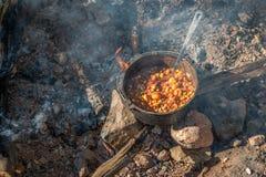 Utomhus- matlagning Fotografering för Bildbyråer