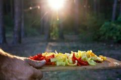 Utomhus- matlagning Huggen av paprika i ett solljus Arkivbild