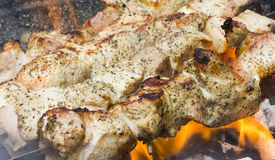 Utomhus- matlagningköttsteknål Arkivbilder