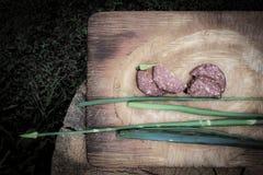 Utomhus- mellanmål för landssommarträdgård: Skivade salamikorv och salladslökar på en Rusty Cutting Board Placed On träjournalen royaltyfri fotografi