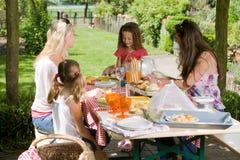 utomhus picknick Royaltyfria Bilder