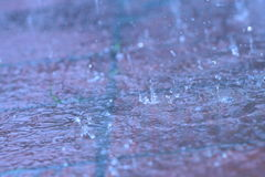 utomhus- regn Royaltyfri Foto