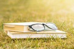 Utomhus- rekreationläsning en bok arkivfoto