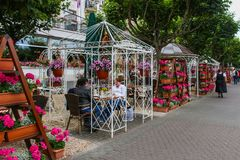 Utomhus- restaurang och kafé under gazebos i Boppard, Tyskland royaltyfria foton