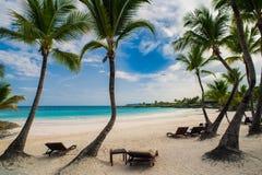 Utomhus- restaurang på stranden. Kafé på stranden, havet och himlen. Tabellinställning på den tropiska strandrestaurangen. Dominik Royaltyfria Foton