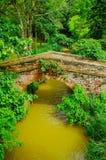 Utomhus- sikt av tegelstenbron som korsar över en smalllflod som lokaliseras inom skogen i den koloniala staden Popayan Royaltyfri Foto