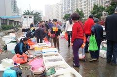 utomhus- skaldjur för marknad Arkivfoto