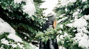 Utomhus stående av den härliga flickan som går till och med den snöig prydliga skogen Baksidan tycka om vintertid royaltyfria bilder