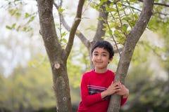 Utomhus- stående av lite pojken på ett träd royaltyfri bild