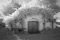 Utomhus- österrikisk vinkällare Arkivbilder