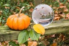 Utomhus- stilleben för höstsäsong med pumpa- och exponeringsglasjordklotet Arkivfoton