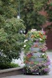 utomhus- stor blomkruka Arkivbilder