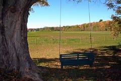utomhus- swing för land Royaltyfri Fotografi