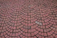 Utomhus- tegelsten som trottoar som läggas som upprepad halvcirkelmodell Arkivfoto