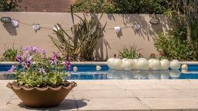 Utomhus trädgårds- garnering för händelse i simbassäng Fotografering för Bildbyråer