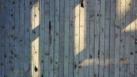 Utomhus- trädurk med blad fotografering för bildbyråer