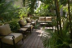 utomhus- tropiskt för vardagsrum royaltyfria bilder