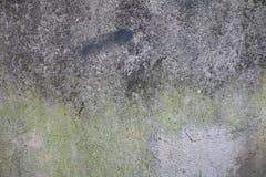 Utomhus- väggtextur Royaltyfri Bild