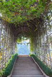 Utomhus- växtbågetunnel med konkret trappa Royaltyfri Bild