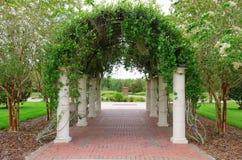 Utomhus- valvgång med kolonner och vinrankor på galler Royaltyfri Foto
