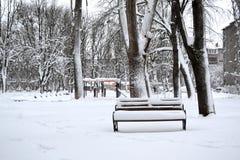 utomhus- vinter snöig dag härlig natur i vinter Fotografering för Bildbyråer
