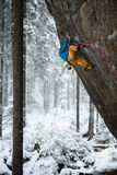 Utomhus- vintersport Vagga klättraren som stiger en utmanande klippa Extrem sportklättring royaltyfria foton