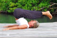 utomhus yoga royaltyfri fotografi