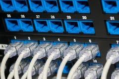UTP - панель соединителя кабелей RJ45 Стоковые Фотографии RF
