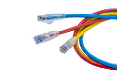 UTP cables patch cord Royalty Free Stock Photos