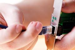 UTP connector RJ-45 Ethernet card Stock Image