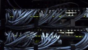 UTP-de kabels worden verbonden met een netwerkschakelaar Netwerkactiviteit op schakelaar Rek Opgezette Servers Close-up stock footage