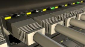 UTP-kabels in aan de lijn die van de netwerkschakelaar worden gestopt stock video