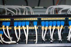 UTP LAN Connect the ethernet port Royalty Free Stock Photos