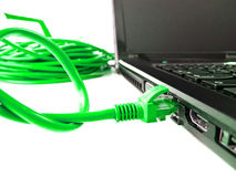 UTP network cable. Connecting to laptop Stock Image