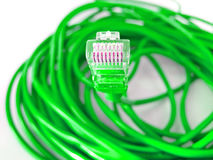 UTP network cable. Green UTP network cable wire Stock Images