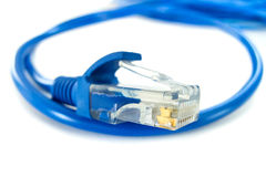 UTP network cable Royalty Free Stock Photo