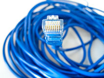UTP network cable. A shot of UTP network cable. Data Network Hardware Concept Stock Photos