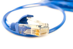 UTP network cable. A shot of UTP network cable. Data Network Hardware Concept Royalty Free Stock Photos
