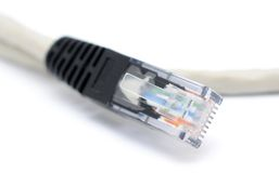 UTP Patchcord Stock Photos